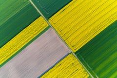 Vista aerea sul giacimento della colza fotografie stock