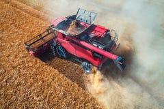 Vista aerea sull'associazione che lavora al grande giacimento di grano Fotografie Stock Libere da Diritti
