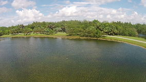 Vista aerea tropicale del parco archivi video