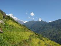 Vista agradável da montanha em nepal foto de stock