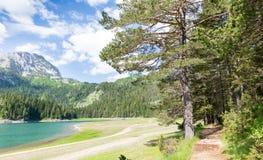 Vista agradável do lago e de montanhas azuis Imagens de Stock
