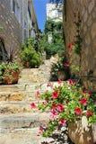 Vista agradável o Safed velho Fotografia de Stock