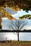 Vista agradável pelo lago Fotografia de Stock Royalty Free