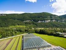 Vista agricola aerea del campo e del greenho di produzione della lattuga Fotografie Stock Libere da Diritti