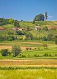 Vista agricola di verticale del paesaggio della campagna Fotografie Stock Libere da Diritti