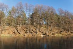 Vista al aire libre del lago congelado en invierno Fotografía de archivo