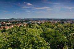 Vista al fiume della Moldava a Praga con gli alberi verdi in priorità alta dalla torre di rozhledna di Petrinska in repubblica Ce Immagini Stock Libere da Diritti