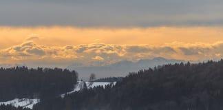 Vista al Grafenau innevato nella foresta bavarese con la vista alle alpi, Baviera, Germania Fotografia Stock
