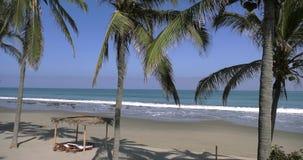 Vista al mar con las palmeras en el primero plano