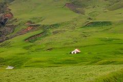 Vista al paesaggio della montagna in Islanda Fotografie Stock Libere da Diritti