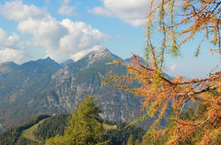 Vista al pico del seeberg, montañas austríacas Imagen de archivo libre de regalías