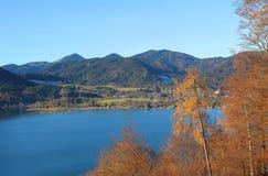 Vista al tegernsee del lago, alberi di larice autunnali Fotografia Stock