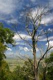 Vista al valle Foto de archivo