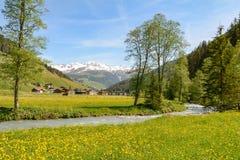 Vista al valle de Tuxertal con el río de Tux y las montañas de Zillertal cerca del pueblo Juns y al glaciar en verano, el Tirol A foto de archivo