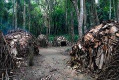 Vista al villaggio di Baka del pigmeo, Somalomo, parco nazionale di Dja, Camerun immagini stock