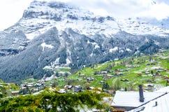 Vista al villaggio di Grindelwald sotto la montagna di Eiger, Svizzera Fotografia Stock Libera da Diritti