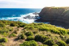 Vista all'allerta al Nobbies, Phillip Island, Victoria, Australia di Southpoint Fotografia Stock Libera da Diritti