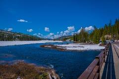 Vista all'aperto del fiume congelato parziale nel parco nazionale di Yellowstone, immagine presa da un ponte nel parco, in splend immagini stock