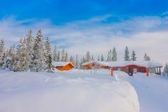 Vista all'aperto di neve in pini durante un inverno pesante e le case rosse di legno tipiche Fotografia Stock Libera da Diritti