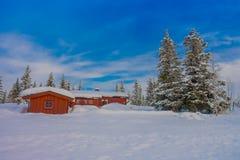 Vista all'aperto di neve in pini durante un inverno pesante e le case rosse di legno tipiche Immagini Stock