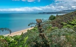Vista alla baia di Tasman della costa dell'oceano, area del Nelson, Nuova Zelanda immagini stock