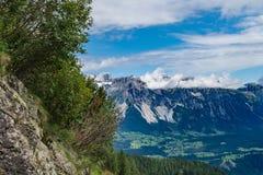 Vista alla catena montuosa di Hohe Dachstein con i cespugli nel foregro immagine stock libera da diritti