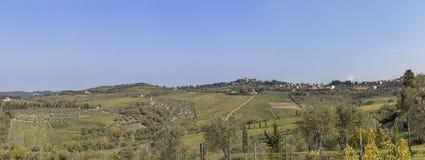 Vista alla città Chastellina in Chianti con le vigne in Toscana dentro immagine stock