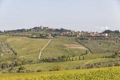 Vista alla città Chastellina in Chianti con le vigne in Toscana dentro fotografia stock libera da diritti