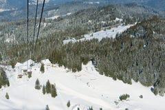 Vista alla foresta al pendio della montagna di Pilatus dalla gondola della cabina di funivia in Lucern, Svizzera Fotografia Stock Libera da Diritti