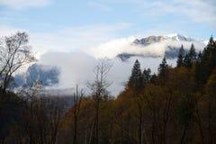 Vista alle montagne di Bocegi, Romania immagine stock libera da diritti