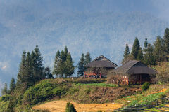 Vista alle montagne a terrazze nel PA del Sa, Vietnam Fotografia Stock