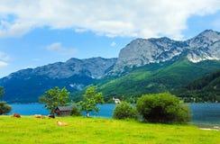 Vista alpina del lago di estate Fotografia Stock