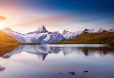 Vista alpina del Mt Schreckhorn e Wetterhorn Posizione Bach Fotografia Stock Libera da Diritti