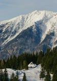 Vista alpina della capanna Fotografie Stock