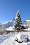 Vista alpina maestosa Fotografie Stock Libere da Diritti
