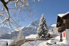 Vista alpina maestosa Fotografia Stock Libera da Diritti