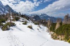 Vista alpina nelle vicinanze del passaggio Vrsic Fotografia Stock
