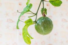 Vista alta chiusa di frutto della passione fresco È buona frutta per la dieta Immagine Stock Libera da Diritti
