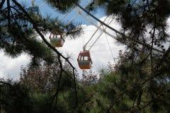 Vista alta vicina della ruota panoramica attraverso i brunch dell'albero Fotografie Stock Libere da Diritti