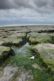 Vista Ambleteuse Francia del mare Fotografie Stock