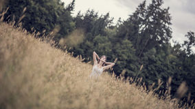 Vista angular na mulher que senta-se na pradaria perto das madeiras Imagens de Stock
