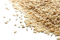 Vista angulosa del arroz moreno aislada en blanco Imagenes de archivo