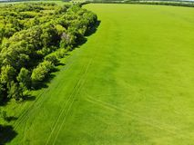vista ao campo no verão na região de Lipetsk em Rússia Fotografia de Stock Royalty Free