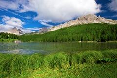Vista ao lago Misurina, à floresta das coníferas e às dolomites, Itália, Euro Fotos de Stock Royalty Free
