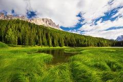 Vista ao lago Misurina, à floresta das coníferas e às dolomites, Itália, Euro Imagem de Stock Royalty Free