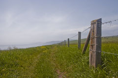 O trajeto sul da costa oeste em Dorset Imagem de Stock Royalty Free