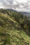 Vista ao oeste sul através de Bergen da montanha de Fløyen imagem de stock royalty free