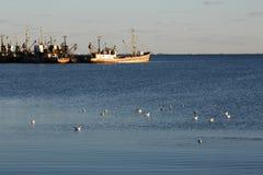 Vista ao porto de Berdyansk Fotos de Stock Royalty Free