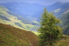 Vista ao Zillertal em cumes austríacos Imagem de Stock