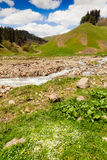 Vista aos montes das montanhas de Cáucaso perto de Arkhyz Fotografia de Stock Royalty Free